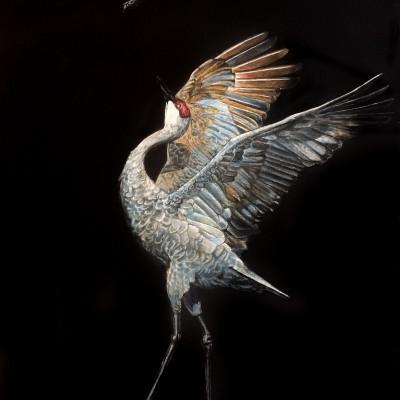 sandhill crane, mating dance, scratchboard, sandhill crane art, migration art, bird portrait, scratchart, kendall king